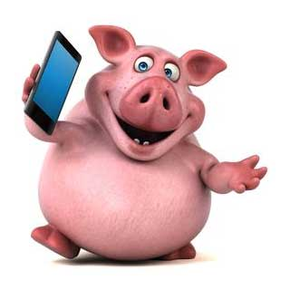 Wendy - The Accounting Pig